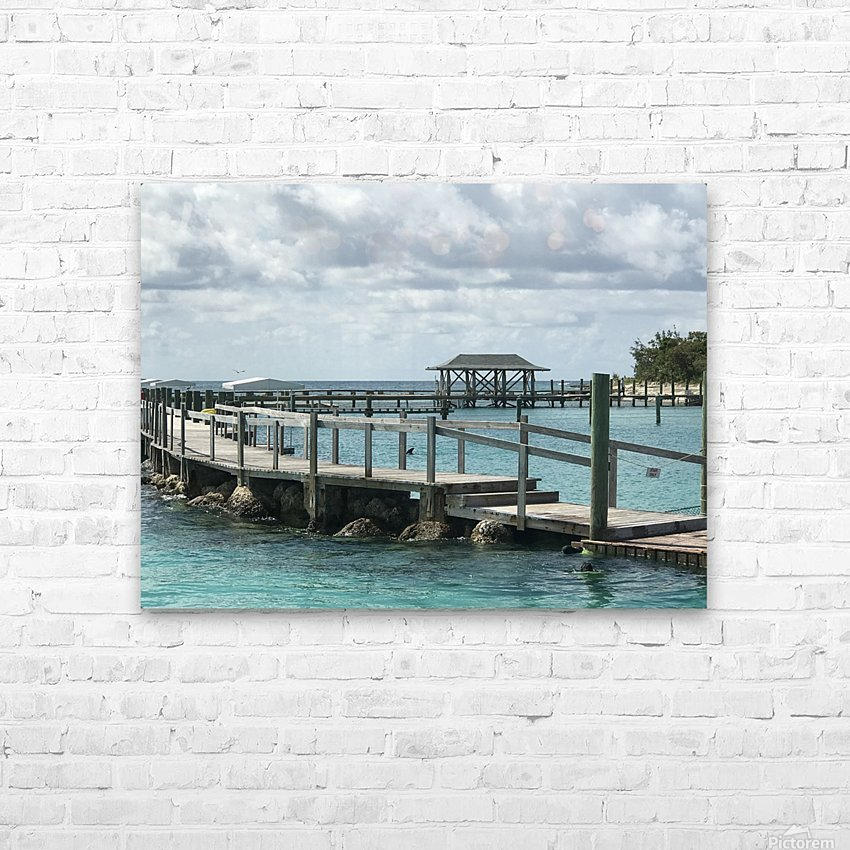 Dolphin Cove HD Sublimation Metal print with Decorating Float Frame (BOX)
