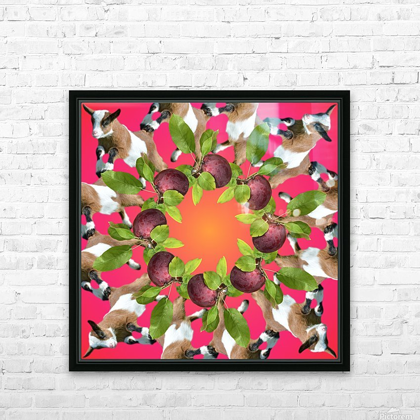 APPLE PICKIN - HD Sublimation Metal print with Decorating Float Frame (BOX)