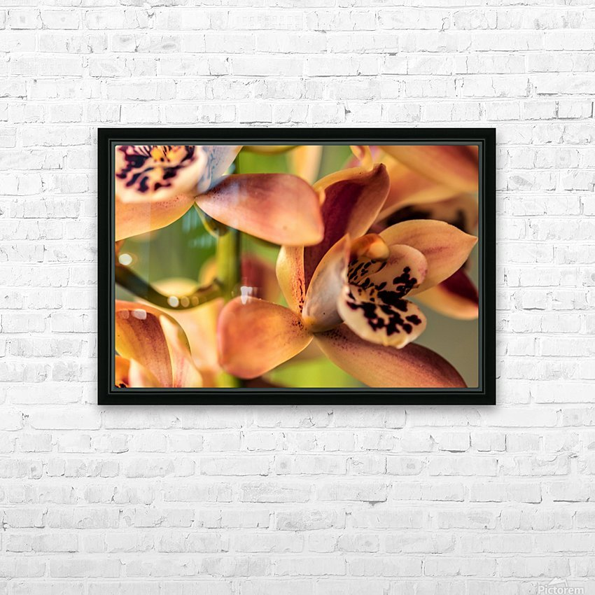 Blush Orchids HD Sublimation Metal print with Decorating Float Frame (BOX)