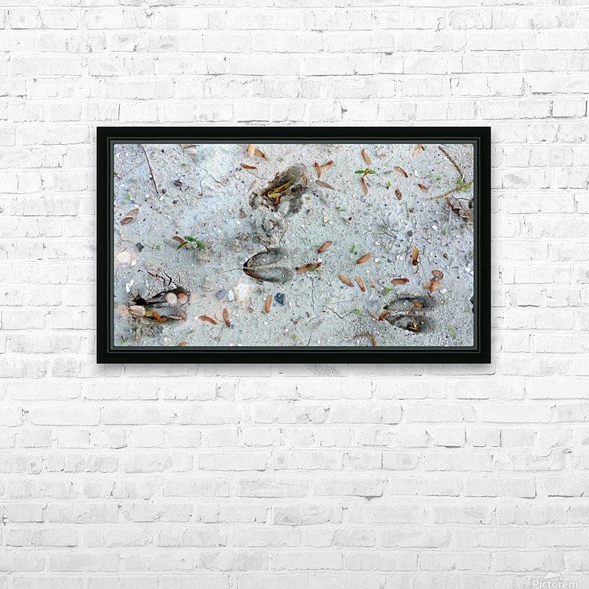 Carolina Deer Tracks HD Sublimation Metal print with Decorating Float Frame (BOX)