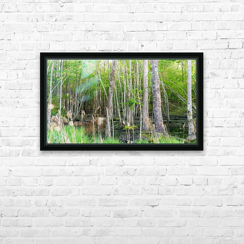 Swamp in Carolina HD Sublimation Metal print with Decorating Float Frame (BOX)
