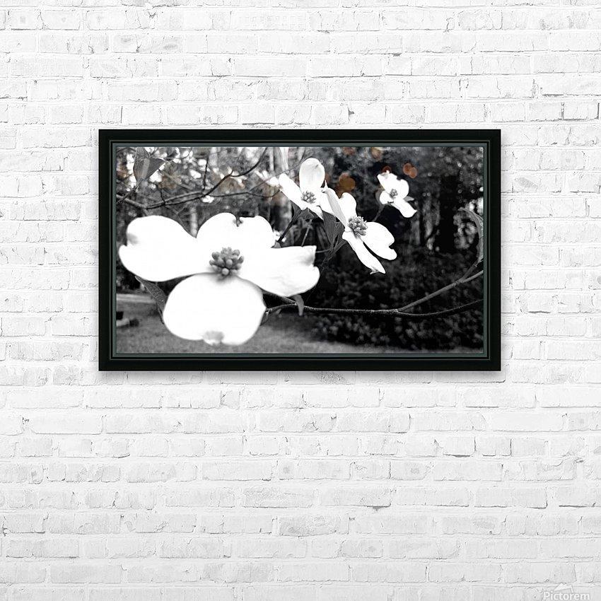 North Carolina Dogwood Flowers  HD Sublimation Metal print with Decorating Float Frame (BOX)