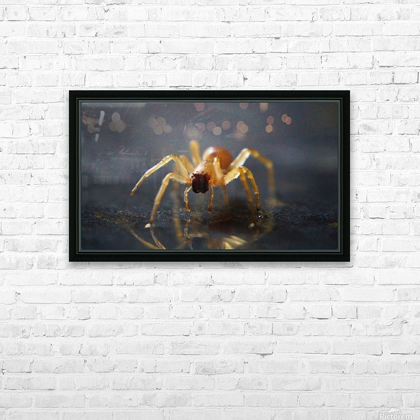 Best spider leg forward HD Sublimation Metal print with Decorating Float Frame (BOX)