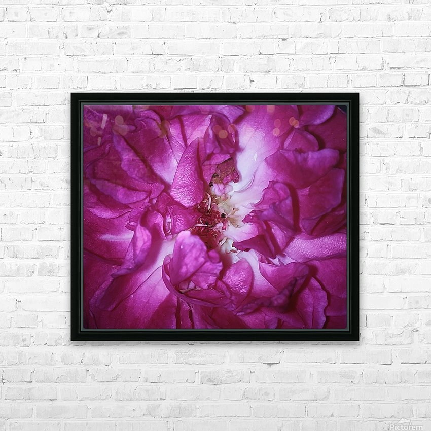 Beautiful Rose   HD Sublimation Metal print with Decorating Float Frame (BOX)