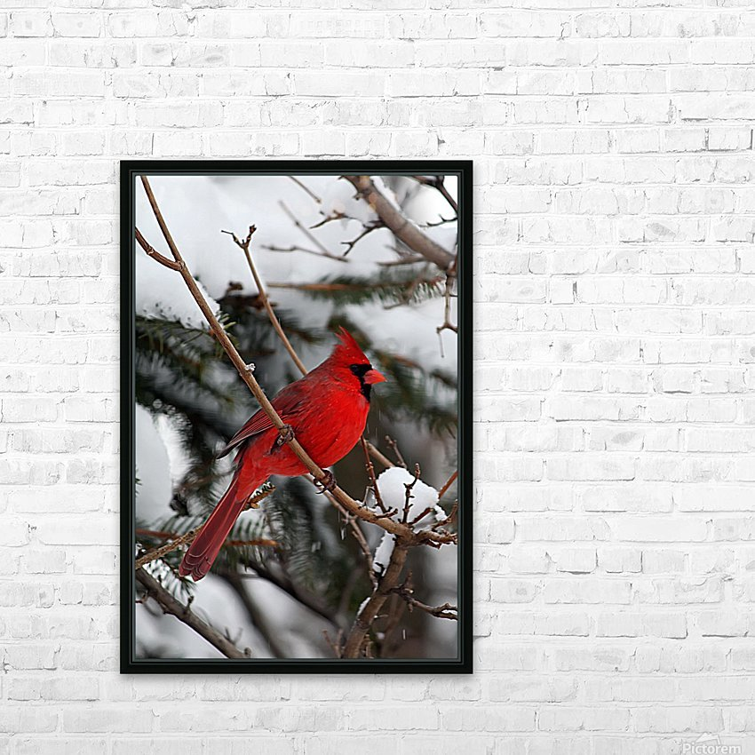 Vertical Cardinal HD Sublimation Metal print with Decorating Float Frame (BOX)