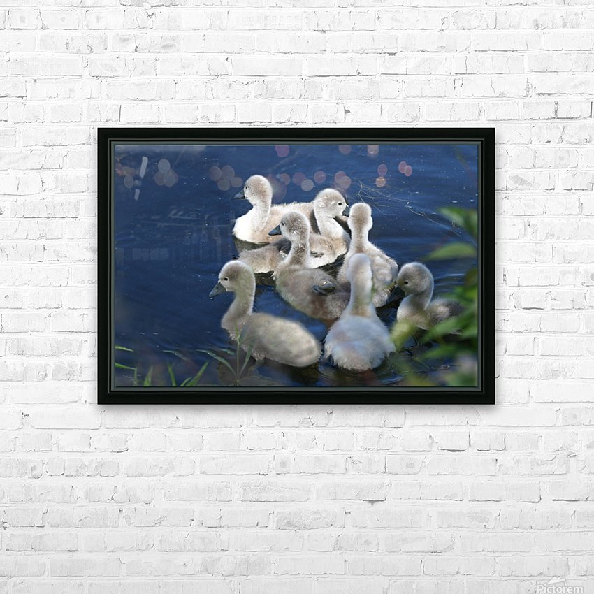 Sygnets HD Sublimation Metal print with Decorating Float Frame (BOX)