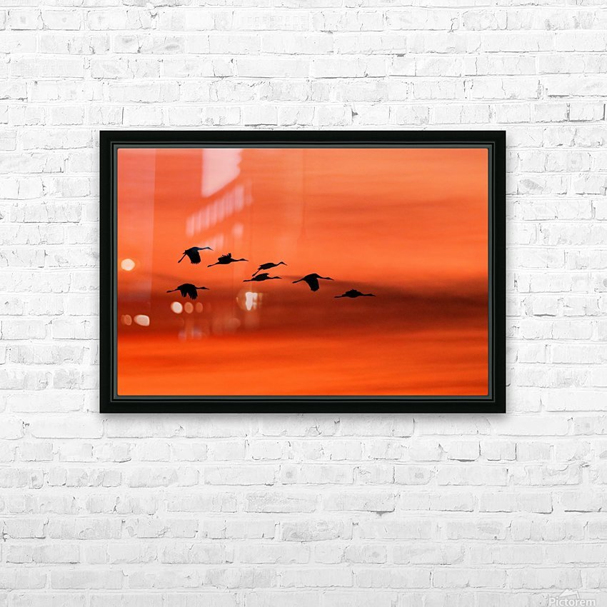 Sandhill Cranes at Sunset HD Sublimation Metal print with Decorating Float Frame (BOX)