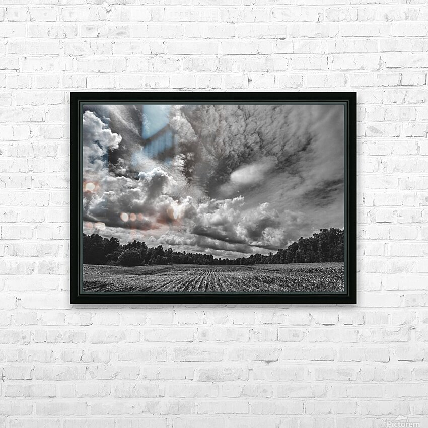 Corn Field HD Sublimation Metal print with Decorating Float Frame (BOX)