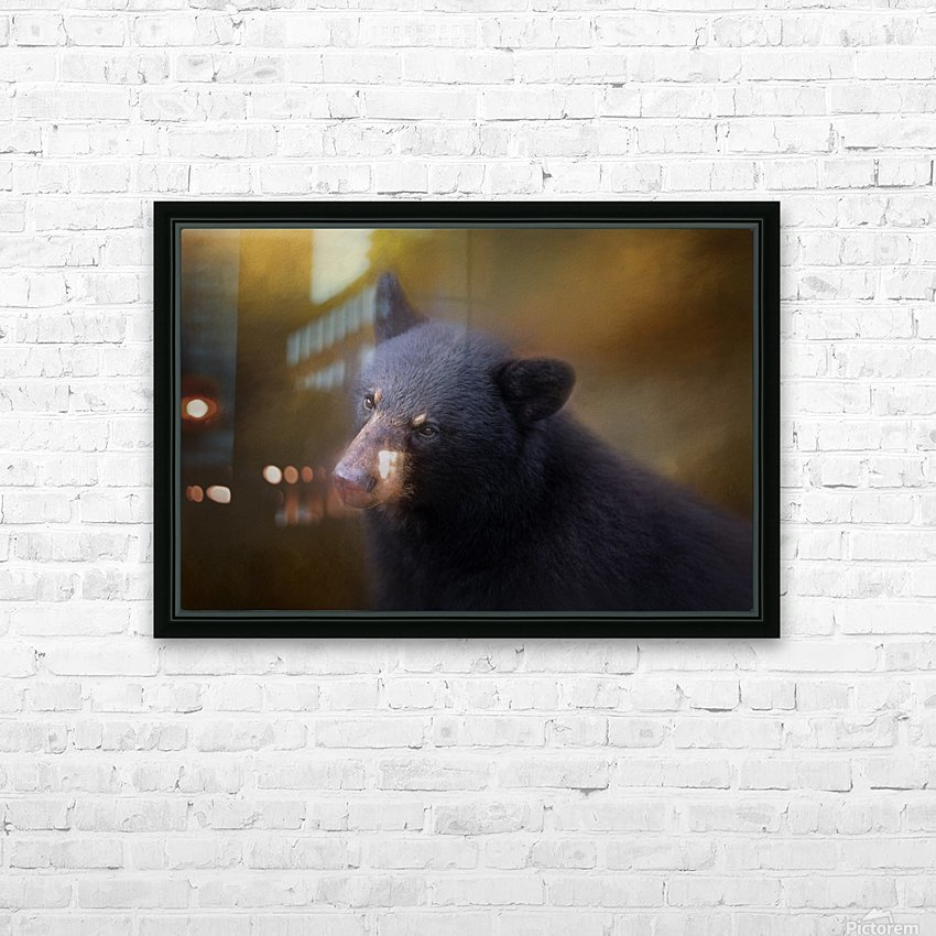 Black Bear Portrait HD Sublimation Metal print with Decorating Float Frame (BOX)