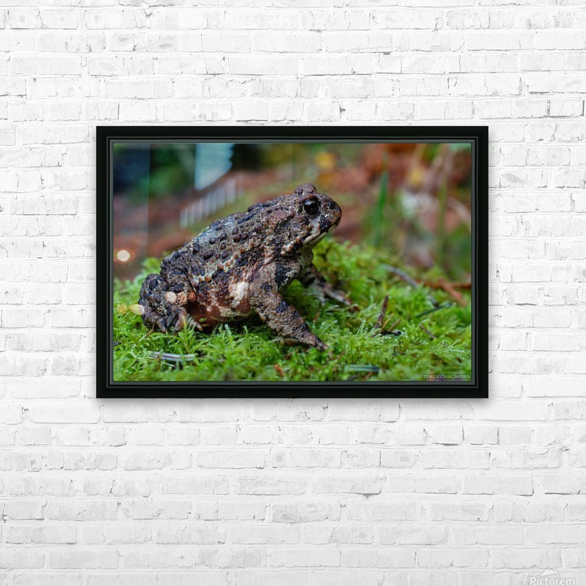 DSC_8076 HD Sublimation Metal print with Decorating Float Frame (BOX)