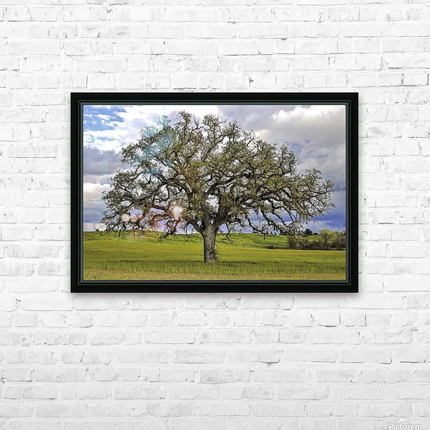 Lone Settler HD Sublimation Metal print with Decorating Float Frame (BOX)