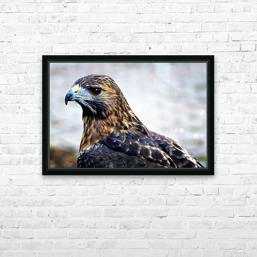 Hawk  HD Sublimation Metal print with Decorating Float Frame (BOX)