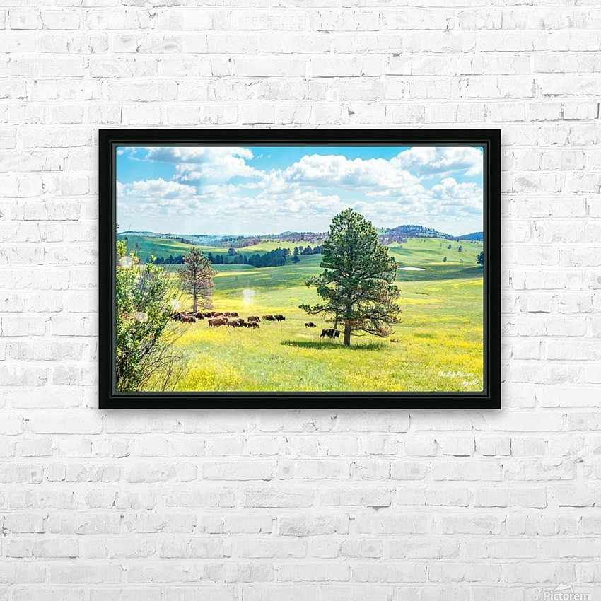 Custer State Park Bison HD Sublimation Metal print with Decorating Float Frame (BOX)