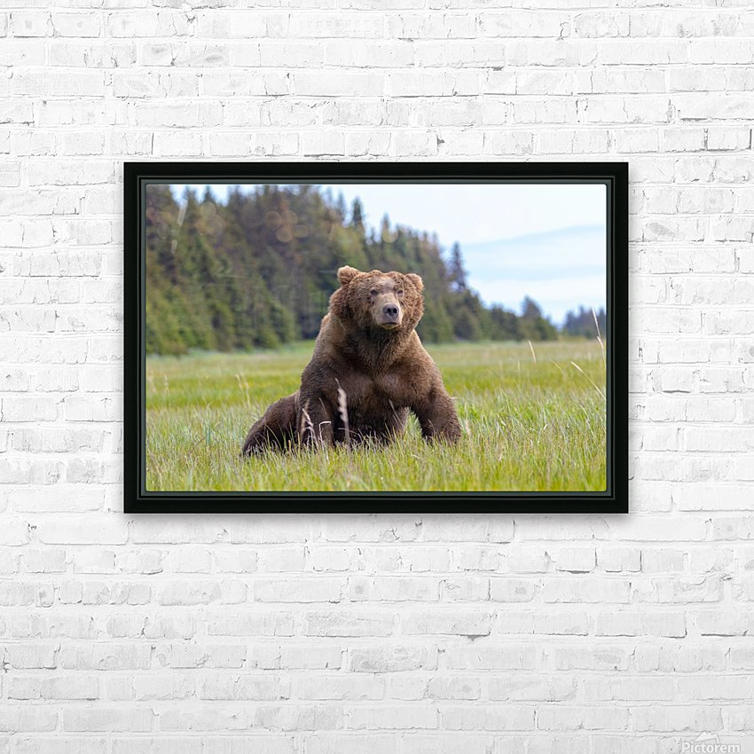 Big boy in the Meadow HD Sublimation Metal print with Decorating Float Frame (BOX)