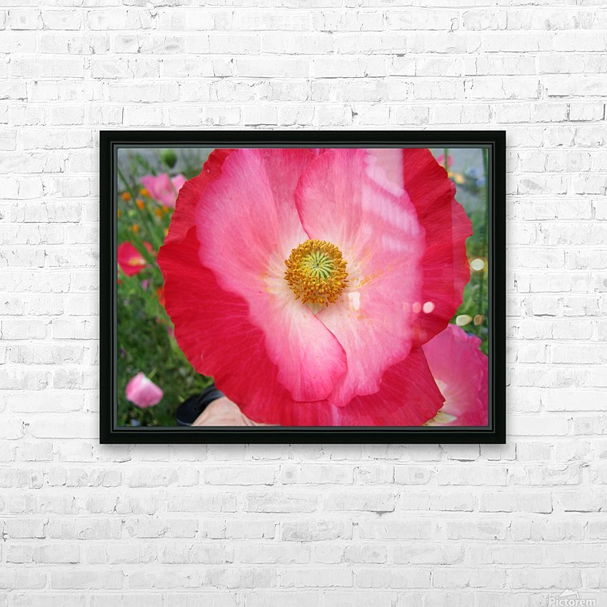 IMG_0375 HD Sublimation Metal print with Decorating Float Frame (BOX)
