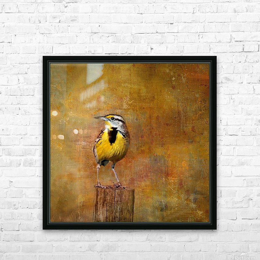 Eastern Meadowlark HD Sublimation Metal print with Decorating Float Frame (BOX)