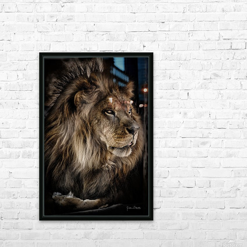 A Lions Profile HD Sublimation Metal print with Decorating Float Frame (BOX)