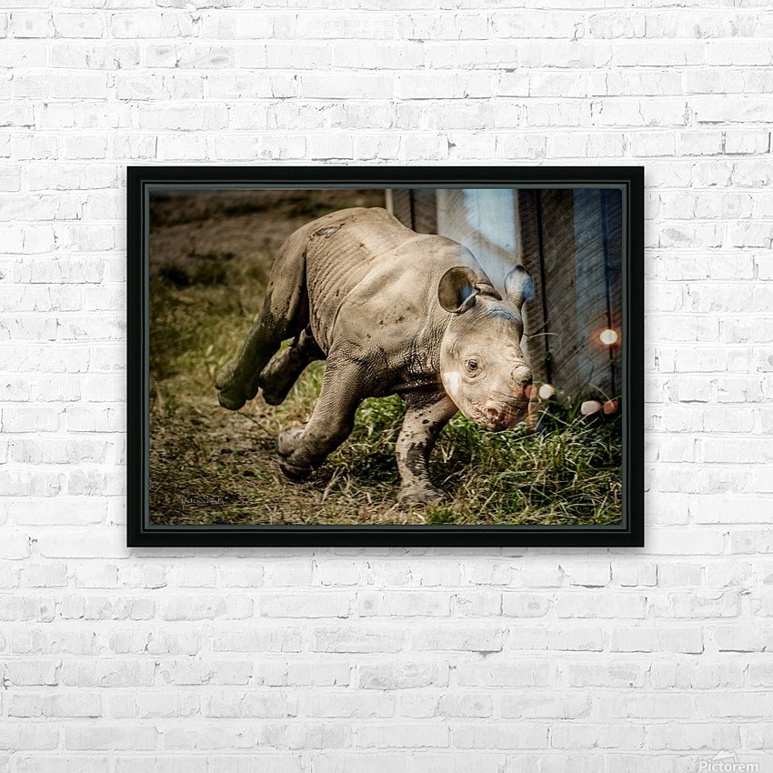 Baby Rhino HD Sublimation Metal print with Decorating Float Frame (BOX)
