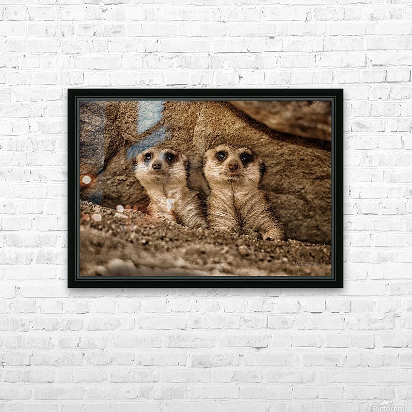 The Meerkat Twins HD Sublimation Metal print with Decorating Float Frame (BOX)