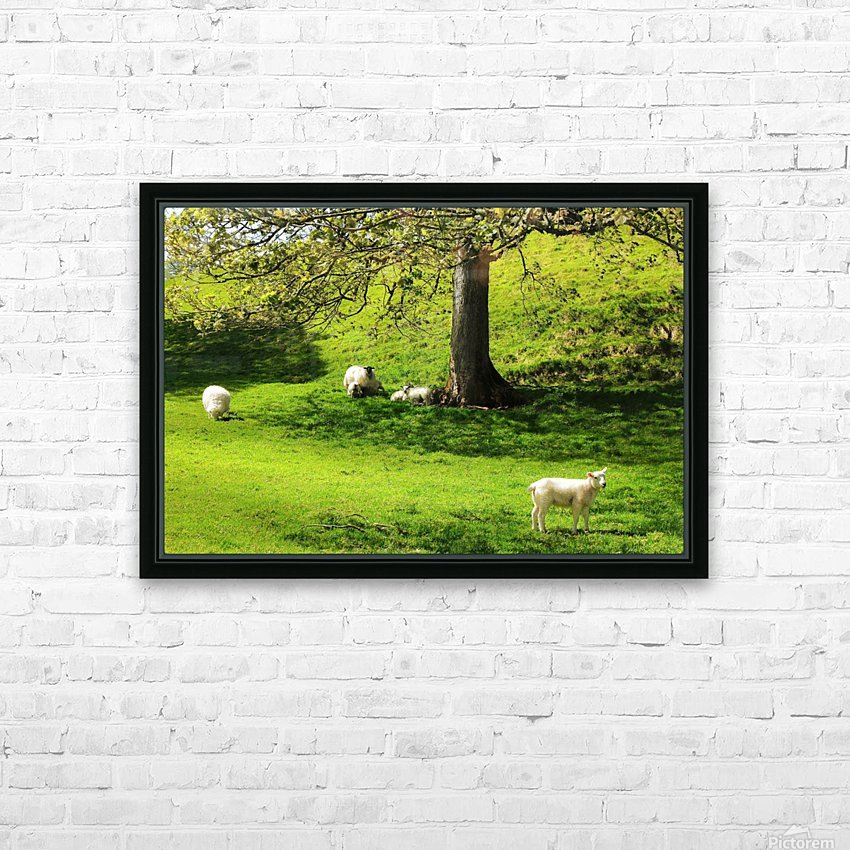 Finding Shade - Northern Ireland HD Sublimation Metal print with Decorating Float Frame (BOX)