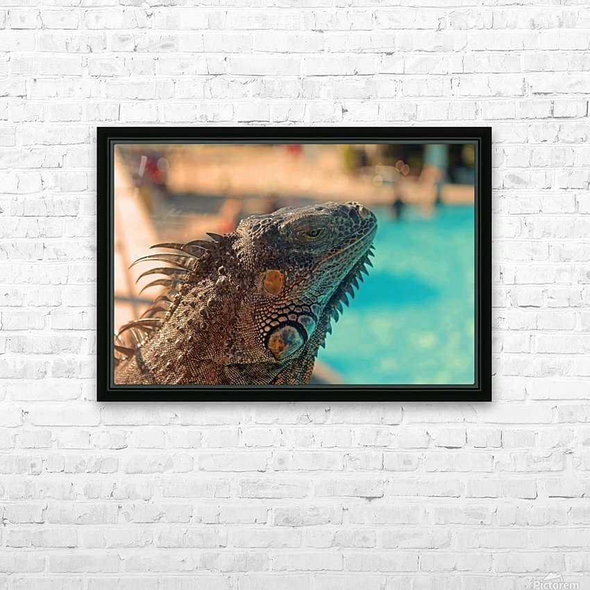 Looking into the Distance HD Sublimation Metal print with Decorating Float Frame (BOX)