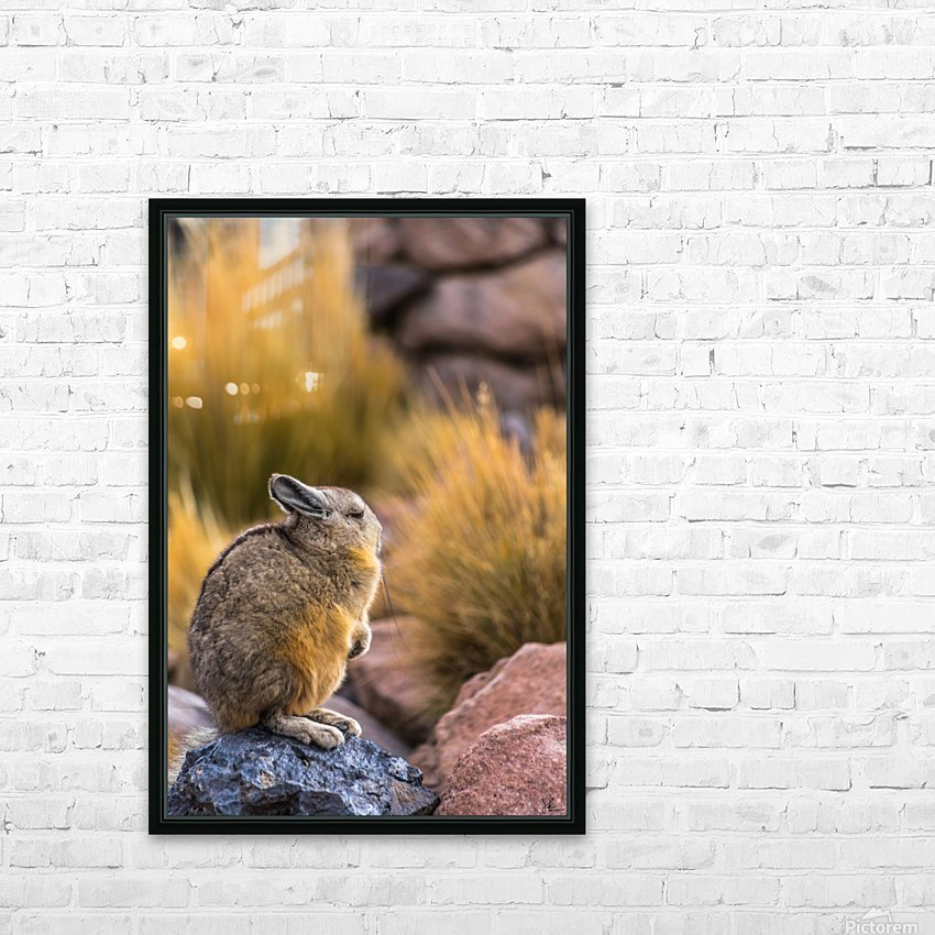 Viscacha HD Sublimation Metal print with Decorating Float Frame (BOX)