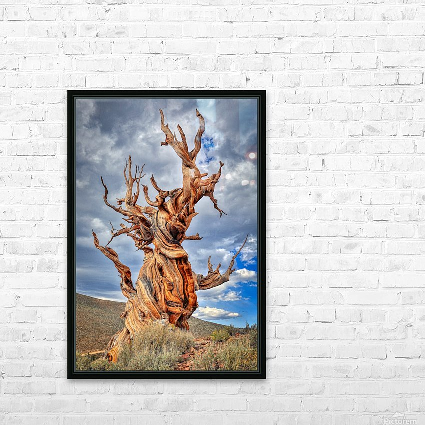 Great Witness of Time HD Sublimation Metal print with Decorating Float Frame (BOX)
