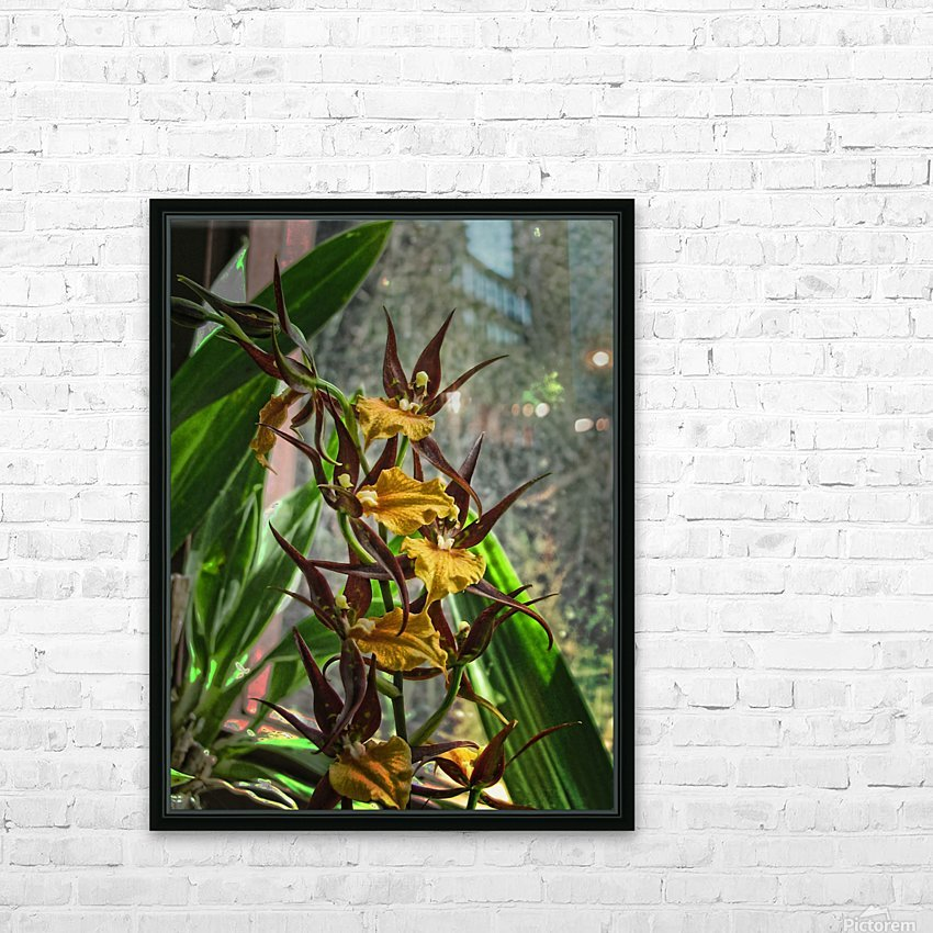 Hawaiian Orchids  HD Sublimation Metal print with Decorating Float Frame (BOX)