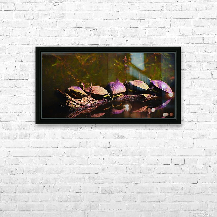 Freshwater Turtles Watercolor HD Sublimation Metal print with Decorating Float Frame (BOX)