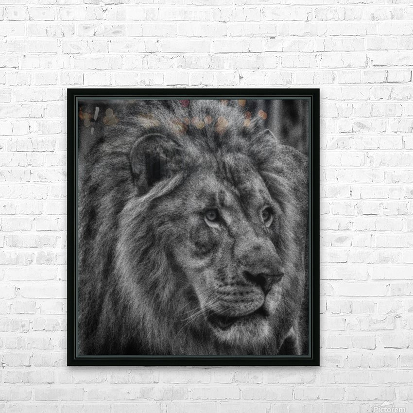 Artistic black and white Lion HD Sublimation Metal print with Decorating Float Frame (BOX)