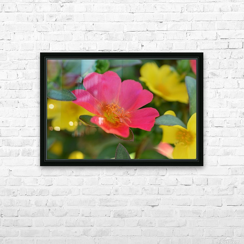 Floral Photography  HD Sublimation Metal print with Decorating Float Frame (BOX)