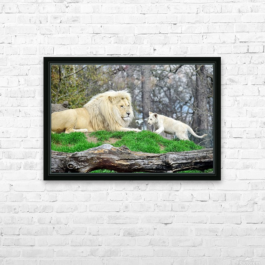 White Lion with Baby HD Sublimation Metal print with Decorating Float Frame (BOX)