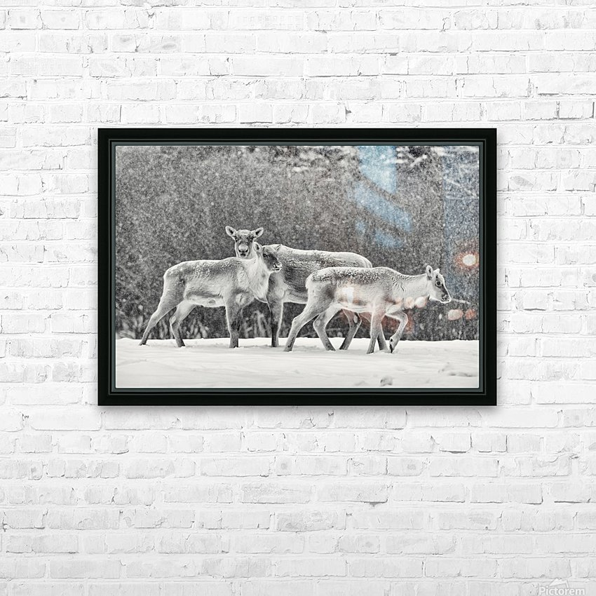The Trio HD Sublimation Metal print with Decorating Float Frame (BOX)