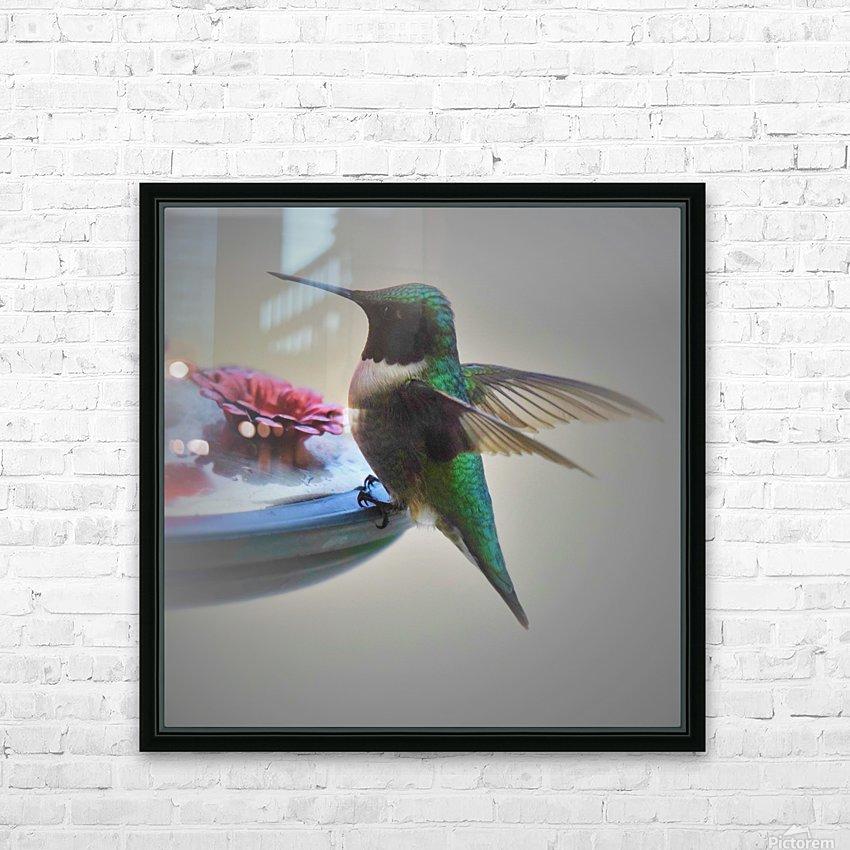 Colibris HD sublimation métal imprimé avec décoration flotteur cadre (boîte)