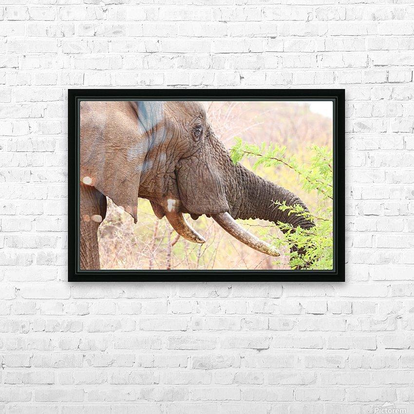 Elefant 6770 HD Sublimation Metal print with Decorating Float Frame (BOX)