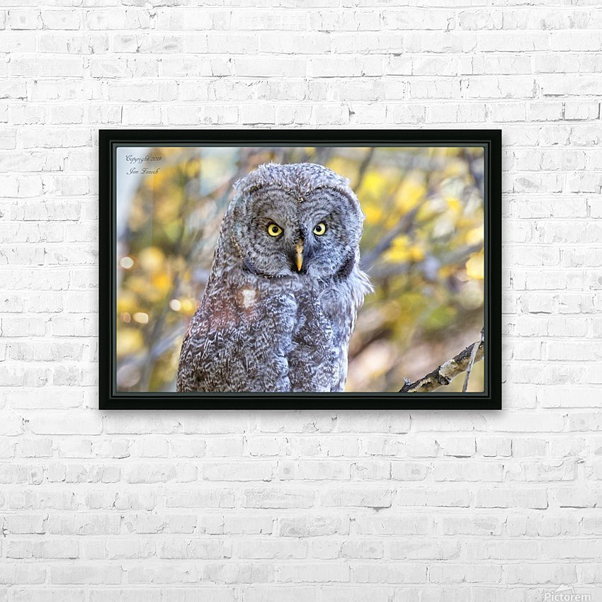 Owls HD Sublimation Metal print with Decorating Float Frame (BOX)