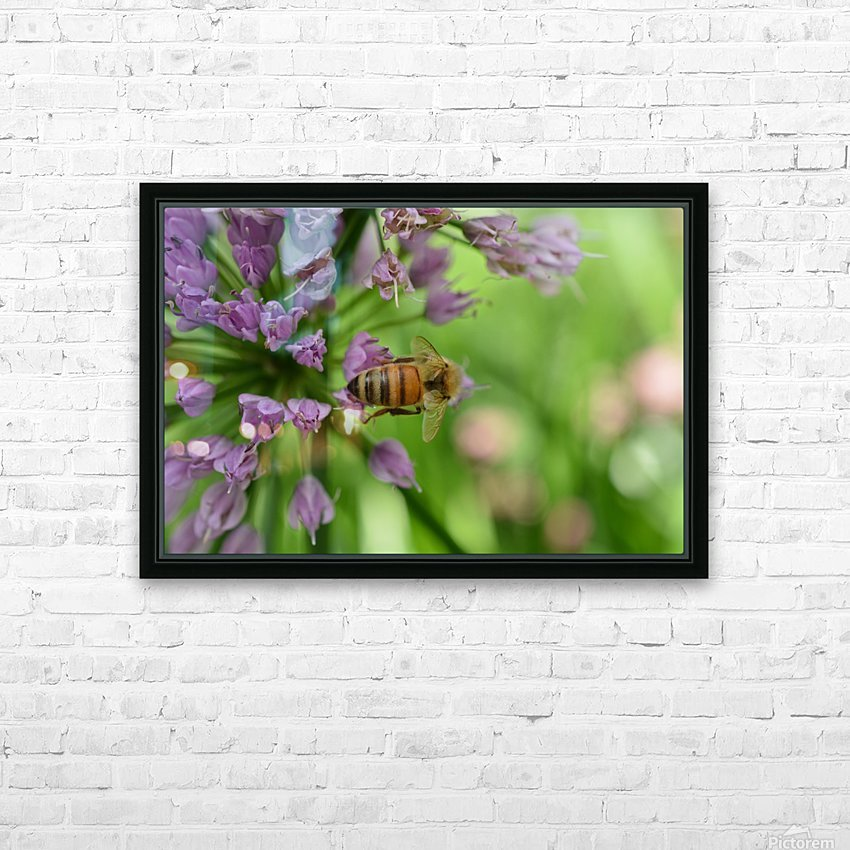 Bees & Flowers Photography HD Sublimation Metal print with Decorating Float Frame (BOX)