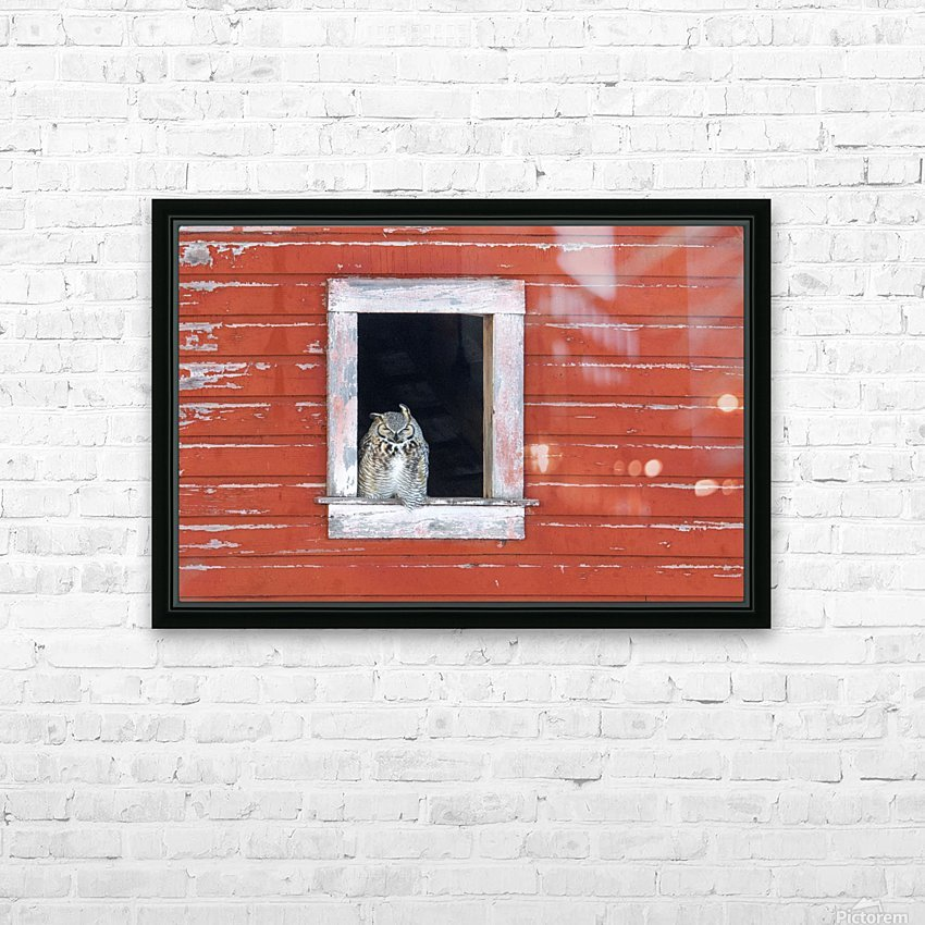 Great Horned Owl - Red Barn HD Sublimation Metal print with Decorating Float Frame (BOX)