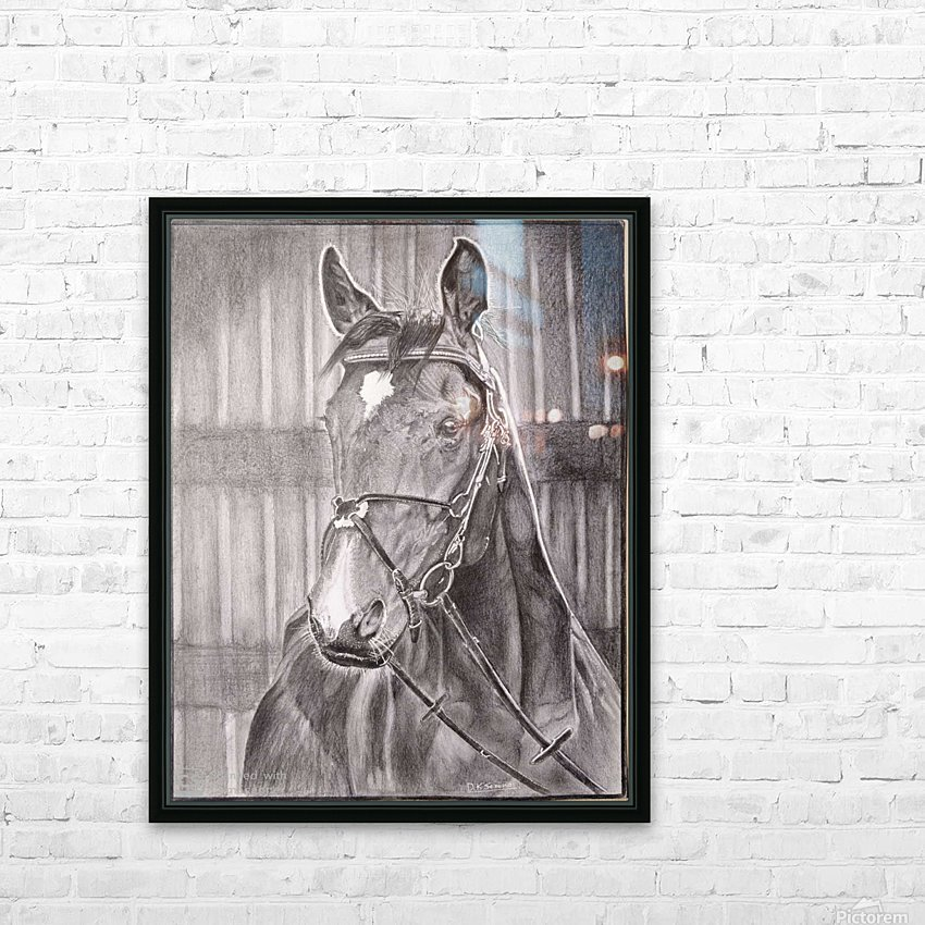 Horse_DKS HD Sublimation Metal print with Decorating Float Frame (BOX)