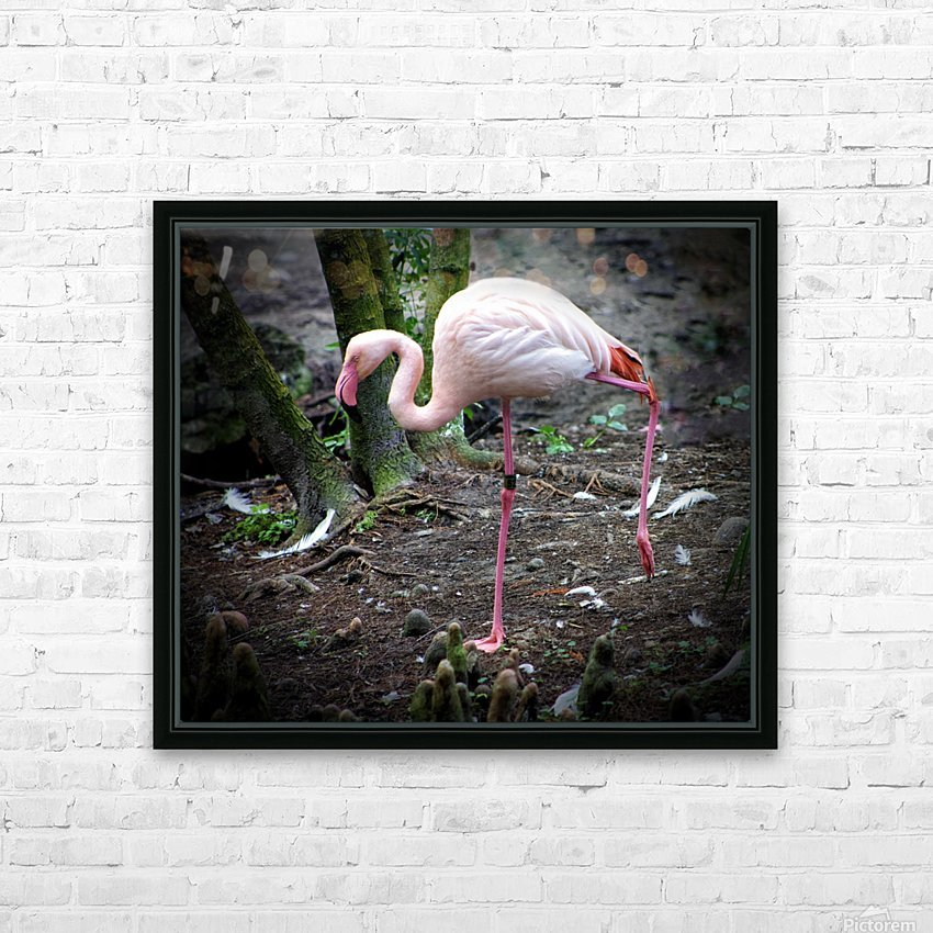 Flamingo HD Sublimation Metal print with Decorating Float Frame (BOX)