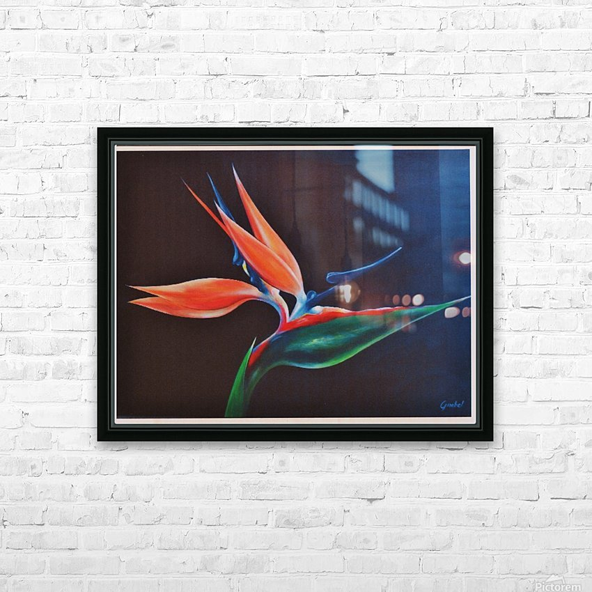 Bird of Paradise 2 HD Sublimation Metal print with Decorating Float Frame (BOX)