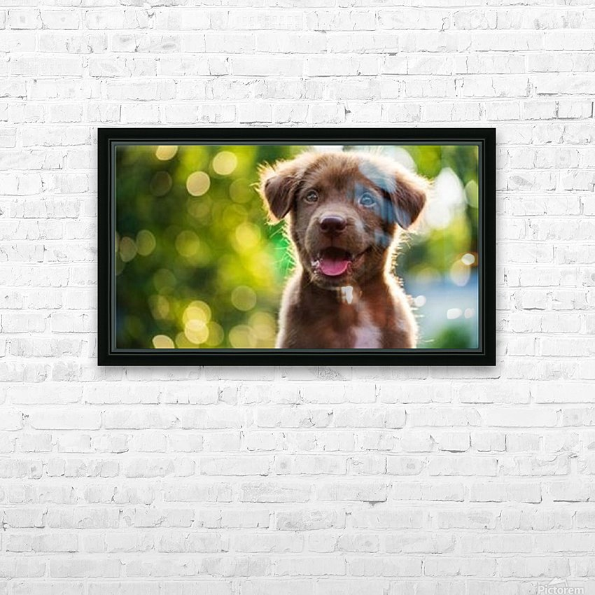 esa dog HD Sublimation Metal print with Decorating Float Frame (BOX)