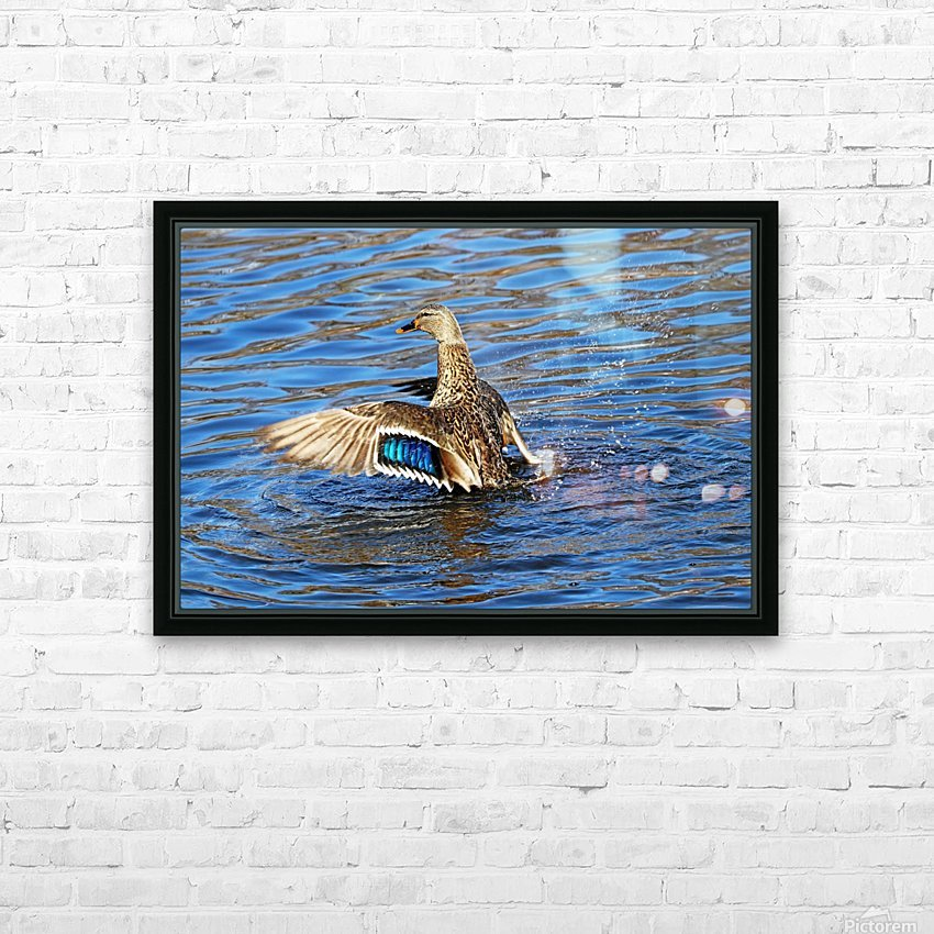 Flaunting The Blues HD Sublimation Metal print with Decorating Float Frame (BOX)