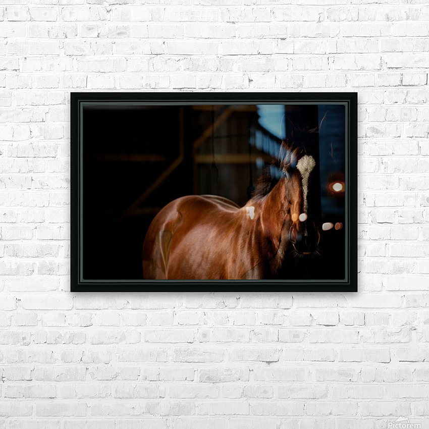 Studio Horses HD Sublimation Metal print with Decorating Float Frame (BOX)