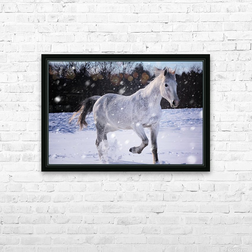 Horses in the Snow HD Sublimation Metal print with Decorating Float Frame (BOX)