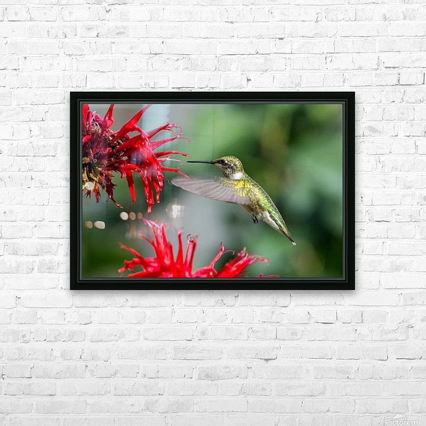 The Happy Bird HD Sublimation Metal print with Decorating Float Frame (BOX)