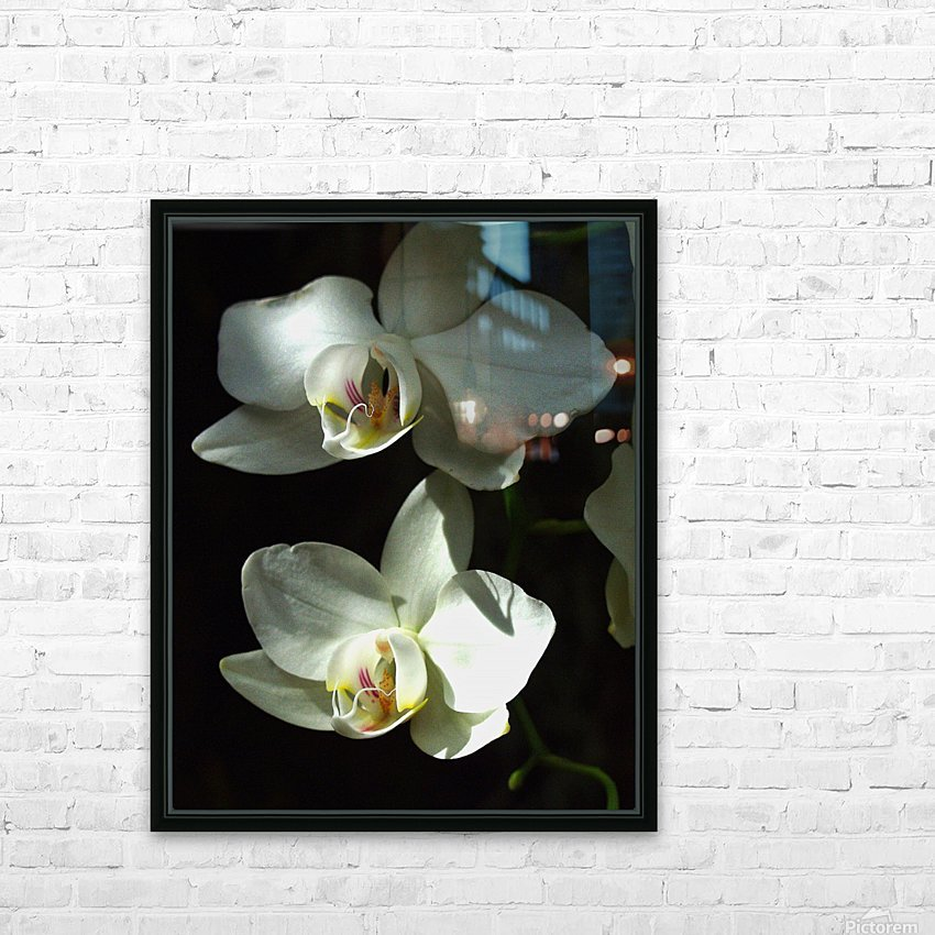 Orchids HD Sublimation Metal print with Decorating Float Frame (BOX)