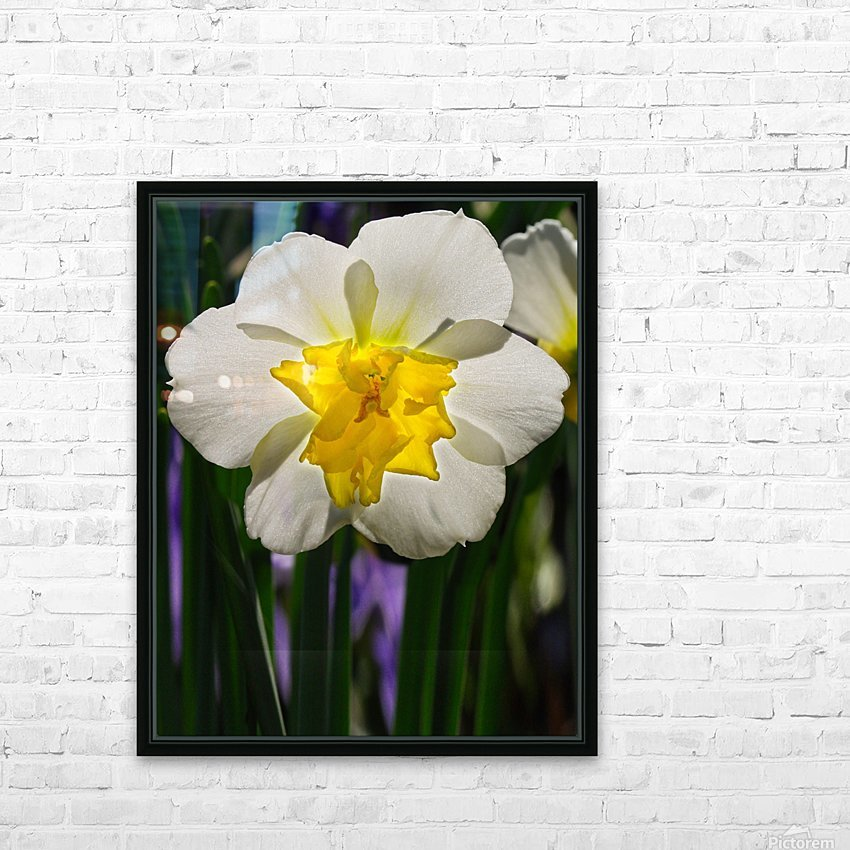 White Daffodil HD Sublimation Metal print with Decorating Float Frame (BOX)