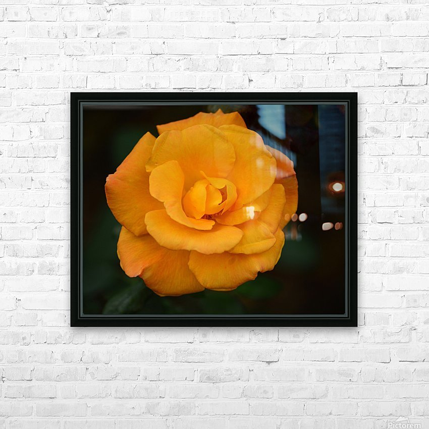 Orange Rose HD Sublimation Metal print with Decorating Float Frame (BOX)