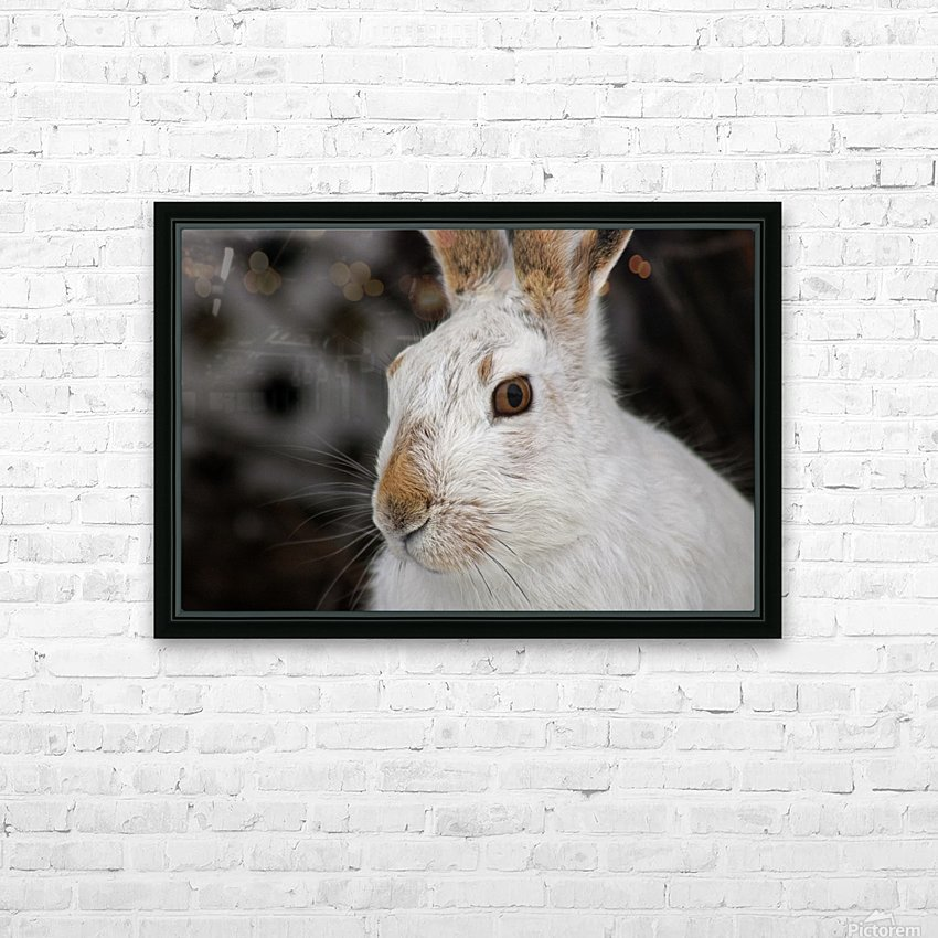 Mr Rabbit HD Sublimation Metal print with Decorating Float Frame (BOX)